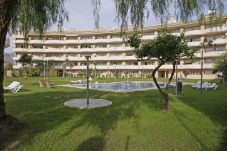 Apartment for 5 people in Albir