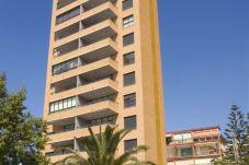 Apartment with 1 bedroom in Benidorm