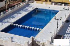 Apartment with swimming pool in Playa de la Concha area