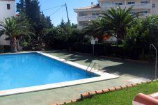 Apartment with swimming pool in Alcocebre / Alcossebre