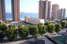 Apartment in Benidorm at 200 m from the beach
